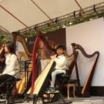 2014 Harp Fest - 文化中心012