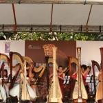 2014 Harp Fest - 文化中心018